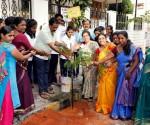 Adamya Chetana -Sasyagraha -Ph-05 26.11.17