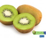 Kiwifruit from Chile Cut 02