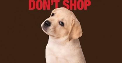 s Day Pet Adoption
